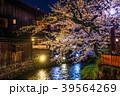 祇園白川 夜桜 桜の写真 39564269