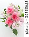 スズラン バラ ストックの写真 39566088