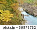 厳美渓 渓谷 紅葉の写真 39578732