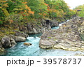 厳美渓 渓谷 紅葉の写真 39578737
