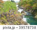 厳美渓 渓谷 紅葉の写真 39578738