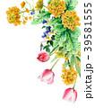 水彩で描いた菜の花とチューリップの装飾フレーム 39581555