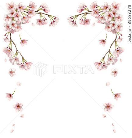 水彩で描いた桜のフレーム素材 39583278
