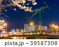 夜桜 夜景 紫川の写真 39587308