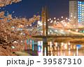 夜桜 夜景 紫川の写真 39587310