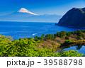 (静岡県)新緑の西伊豆井田 海越しの富士山 39588798