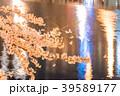 夜桜 花 桜の写真 39589177