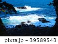 城ヶ崎海岸 伊豆 東伊豆の写真 39589543