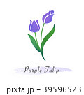 フラワー 花 植物のイラスト 39596523
