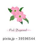 フラワー 花 植物のイラスト 39596544