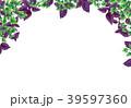バジル パセリ オランダゼリのイラスト 39597360