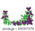 バジル リース 花冠のイラスト 39597370