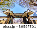 千代田区 城 春の写真 39597501