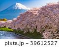 富士山 春 龍巌淵の写真 39612527