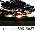 夕日と木 39615087
