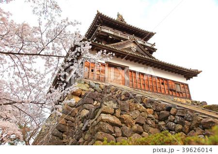 丸岡城 (霞ヶ城) 39626014