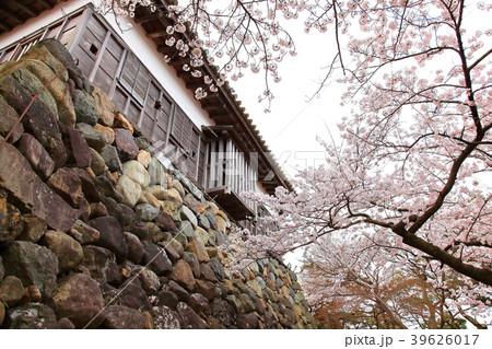 丸岡城 (霞ヶ城) 39626017