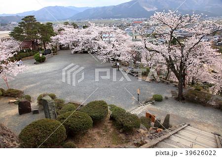 丸岡城 (霞ヶ城) サクラ 39626022