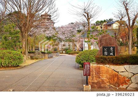 丸岡城 (霞ヶ城) 霞ヶ城公園 39626023