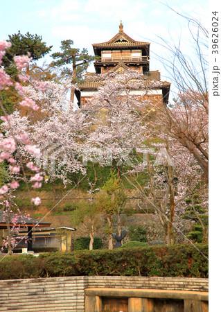 丸岡城 (霞ヶ城) 39626024