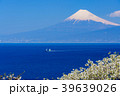 富士山 海 世界遺産の写真 39639026