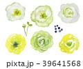 花 ボタニカル 水彩のイラスト 39641568