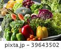野菜 収穫 食材の写真 39643502