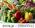 野菜 収穫 食材の写真 39643511