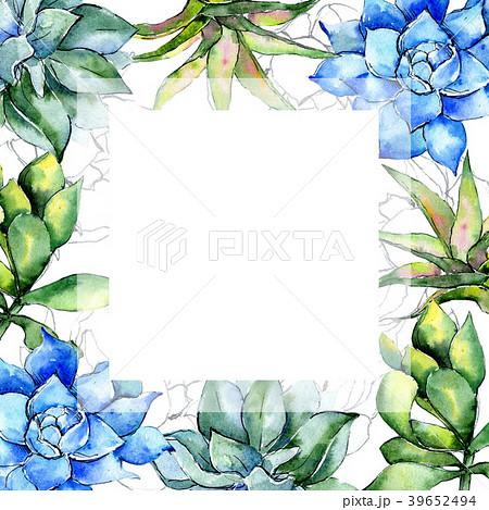 Tropical plant. Floral botanical flower. Wild 39652494