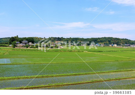夏の青空と田舎の農村風景 39663385