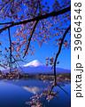 河口湖産屋ヶ崎からの桜と青空の逆さ富士山 2018/04/10 39664548