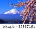 河口湖北岸から満開の桜と青空の富士山 2018/04/10 39667161