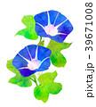 朝顔 花 植物のイラスト 39671008