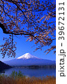 河口湖北岸からの桜と青空の富士山 2018/04/10 39672131