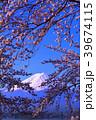 河口湖からの青空の桜と富士山 2018/04/10 39674115