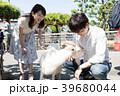 山羊と触れ合うカップル 39680044