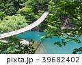 吊り橋 新緑 初夏の写真 39682402