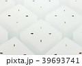 ニュータイプガーデンレタスミックスの水耕栽培 39693741