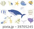 手書き風 海の生き物 イラストセット 39705245
