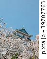 和歌山城 桜 春の写真 39707763