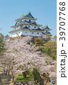 和歌山城 桜 春の写真 39707768
