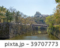 和歌山城 桜 春の写真 39707773