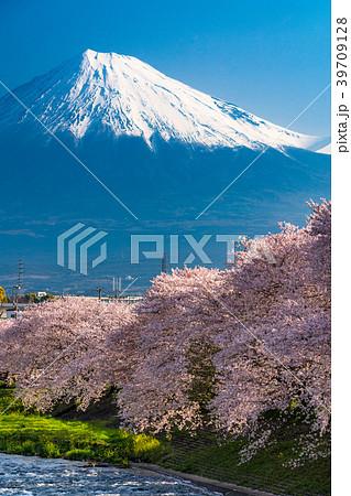 《静岡県》富士山・桜の名所龍巌淵 39709128