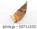 野菜 筍 竹の子の写真 39711332