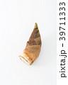野菜 筍 竹の子の写真 39711333