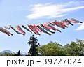 年中行事 鯉のぼり 節句の写真 39727024