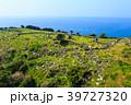 石原橋展望所 風景 平戸の写真 39727320