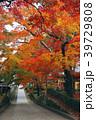 永源寺 臨済宗 紅葉の写真 39729808