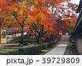永源寺 臨済宗 紅葉の写真 39729809