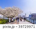 横浜 みなとみらい 汽車道の写真 39729971